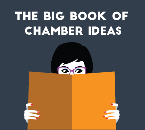 image of 2017 Big Book of Chamber Ideas